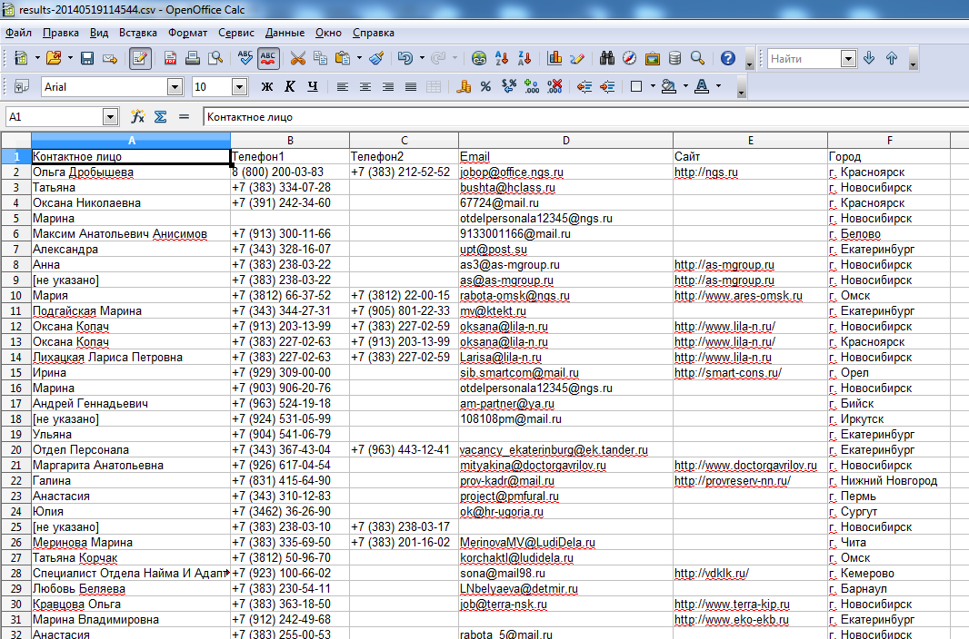 Файл Excel с данными с ngsrabota.ru
